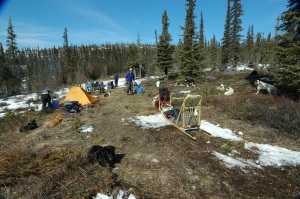 Our first camp during our epic move to Alaska. Would have been perfect with snow!
