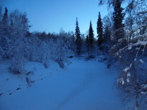 A view of the Little Chena River.